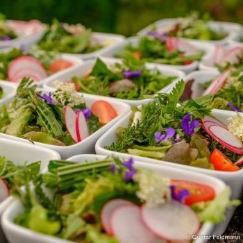 Kräutersalat